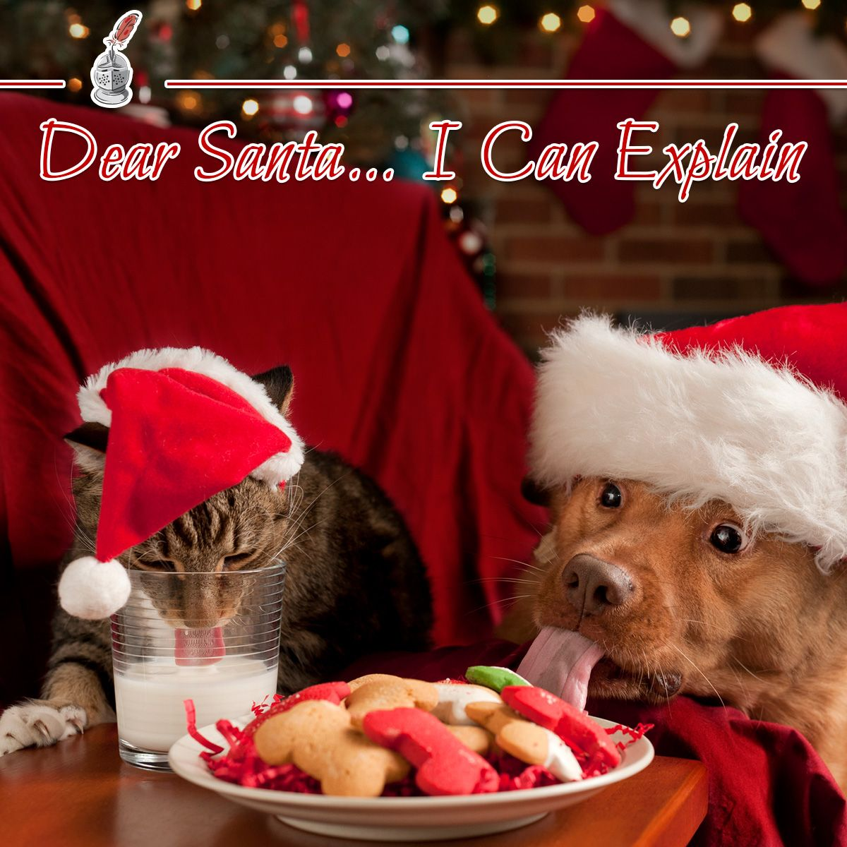 Dear Santa… I Can Explain